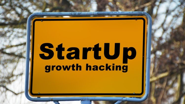 small businesses startup growth