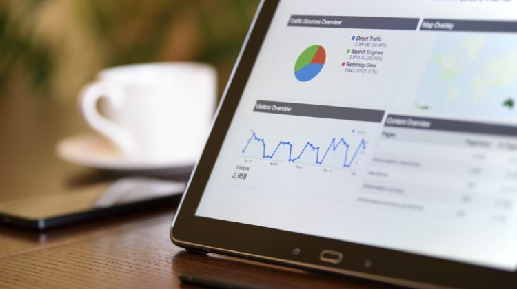 seo guide for beginners